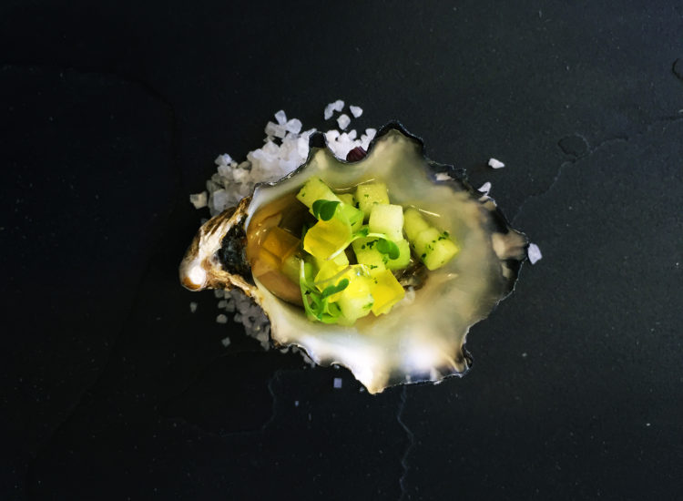 Oyster with apple, cucumber & coriander salsa with citrus jelly